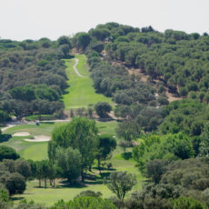 Club-de-Campo-Villa-de-Madrid-portada-Web-arana
